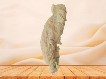 colon plastinated specimen