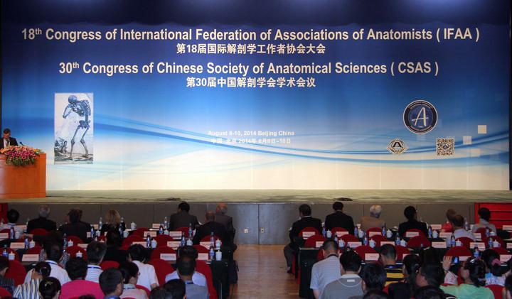international federation of associations of anatomists