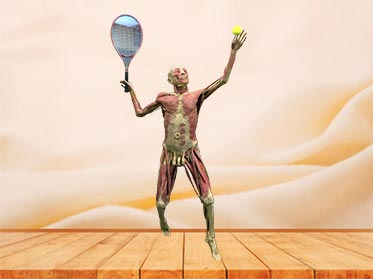 playing tennis teaching specimen